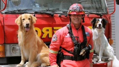 perros-entrenados-participaron-en-rescate-tras-derrumbe-de-la-avenida-abancay-[video]