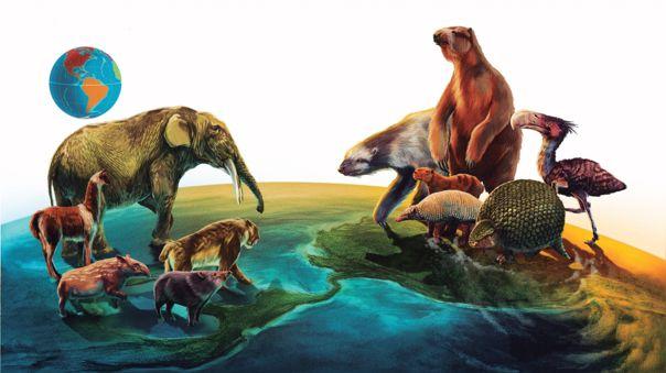 ¿por-que-hubo-una-migracion-desigual-de-mamiferos-entre-las-americas-hace-millones-de-anos?